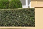 Aberfoyle Park Privacy screens 30